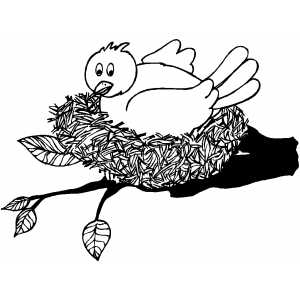 Bird nest coloring page coloring pages for Bird nest coloring page