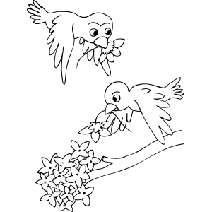 Birds And Flowers Coloring Pages Coloring Pages