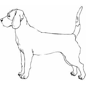 Coloring Page Of A Plott Hound Coloring Pages Bloodhound Coloring Pages