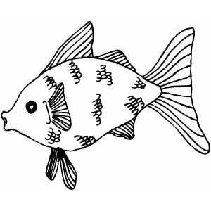 Surprised Goldfish Coloring Page