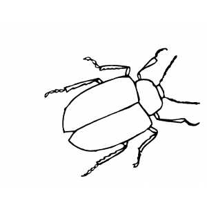 Ladybug Outline Clip Art Vector Online Royalty Free