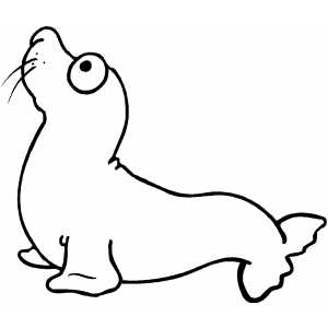 go back pix for baby arctic animals clip art harp seal - Baby Arctic Animals Coloring Pages