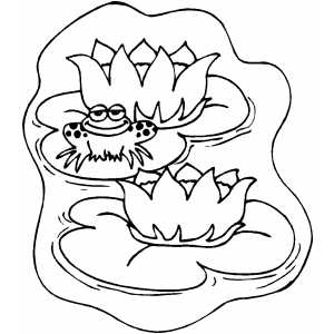 lily pad coloring page - lily pads coloring page