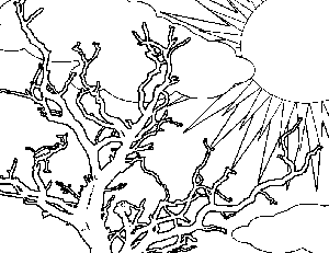 coloring pages trees plants and flowers - apple tree coloring page free