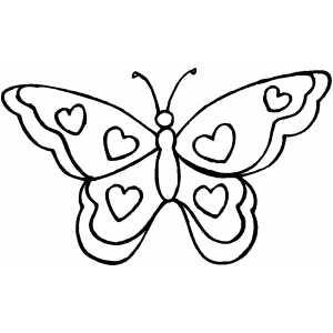 Butterfly.png (300×300)
