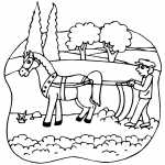 Horsedrawn Plow